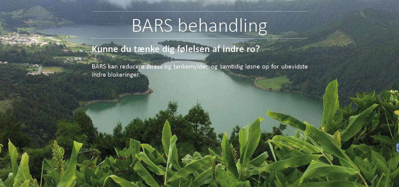 Læs mere om BARS