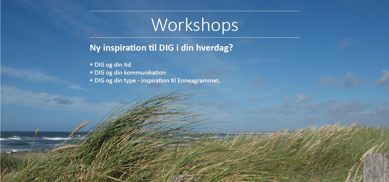 Workshops for DIG
