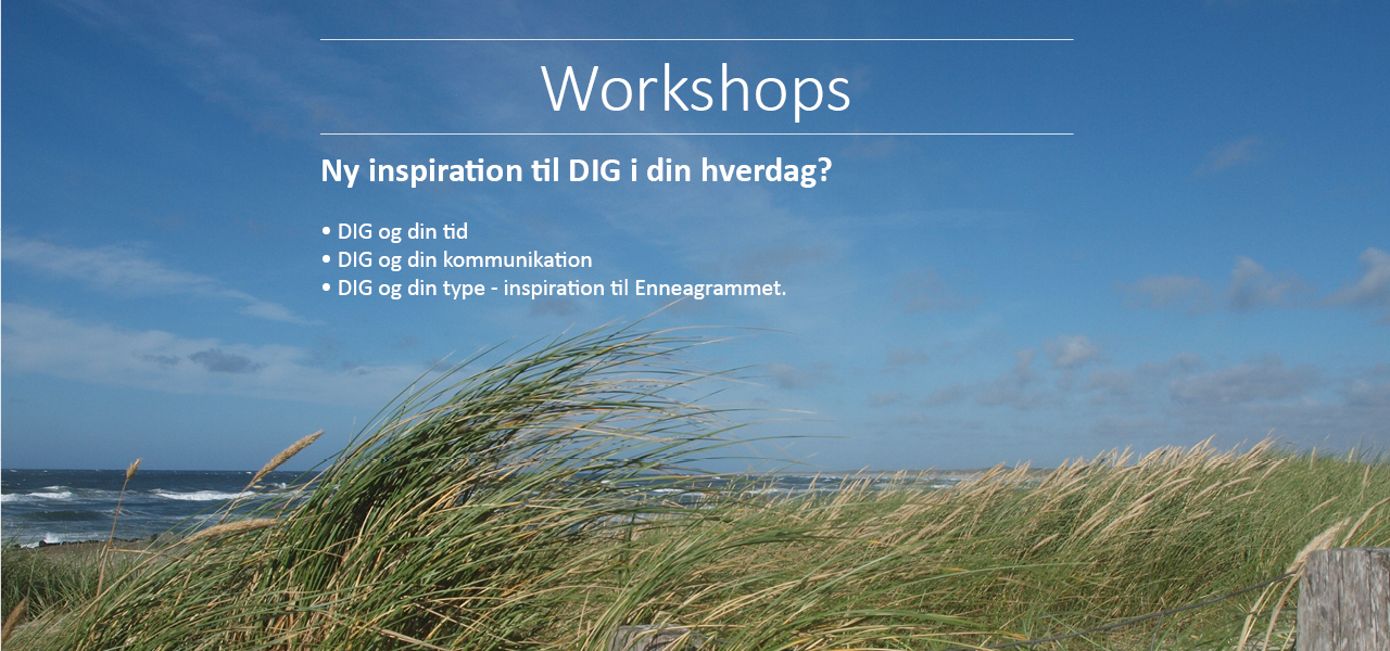 Workshops for DIG